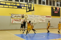 u16 Npdese - Cittadella Cubs 74-64